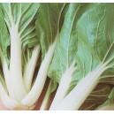 Kapusta Chińska Pak-Choi (Brassica Chinensis) nasiona