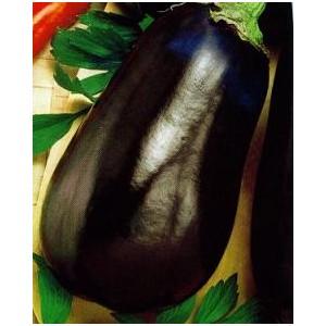 Oberżyna, Bakłażan (Solanum Melongena) nasiona