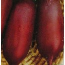 Burak ćwikłowy średniowczesny (Rywal) nasiona