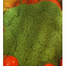 Brokuł (Brassica Oleracea) nasiona
