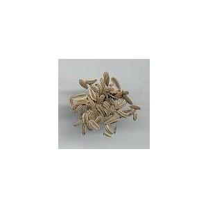 Anyż, Biedrzeniec (Pimpinella Anisum) nasiona