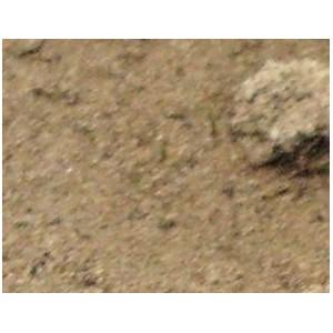 Mieszanka (ziemia kompostowa+piasek+ziemia liściowa, perlit, lawa wulkaniczna, glina) do uprawy  palm 1 Kg