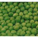 Groch łuskowy (Pisum Sativum) nasiona Marszczone