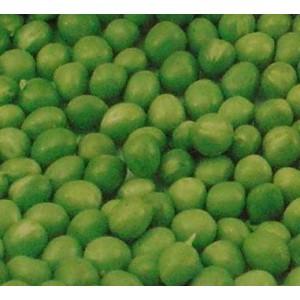 Groch łuskowy wysoki (Pisum Sativum) nasiona